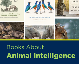 Text: Books About Animal Intelligence